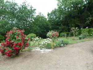 jardin d'Aude et de Denis 3