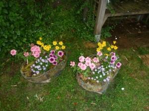 jardin de Dominique