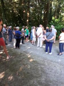 le groupe observe le séquoia dans l'allée royale
