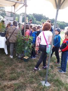 les enfants devant les plantes insolites