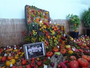 la malle aux tomates